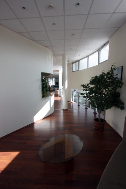 Lexus Buda autószalon belsőépítészete 24